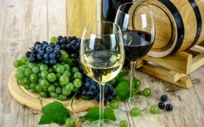 Clasificación de los Vinos por edad: Joven, Roble, Crianza, Reserva y Gran Reserva