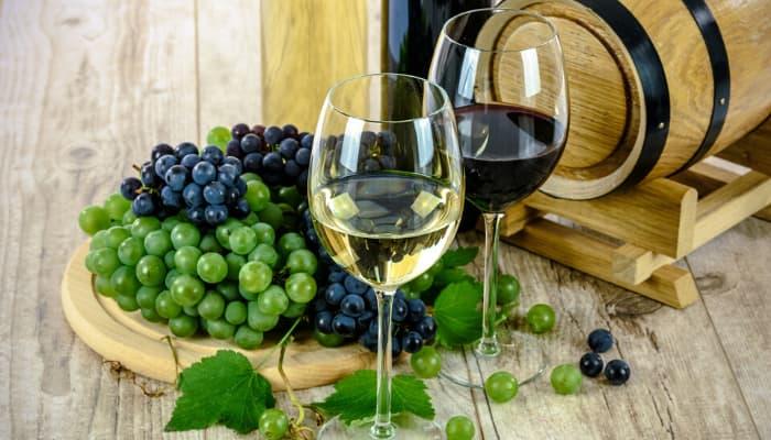 Clasificación de los vinos según la edad La Alacena de Rosario